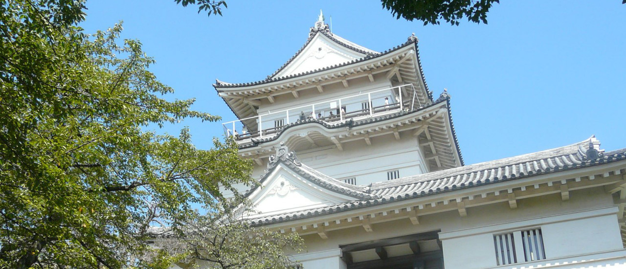 The Odawara Castle, and dangerous routes of Hakone
