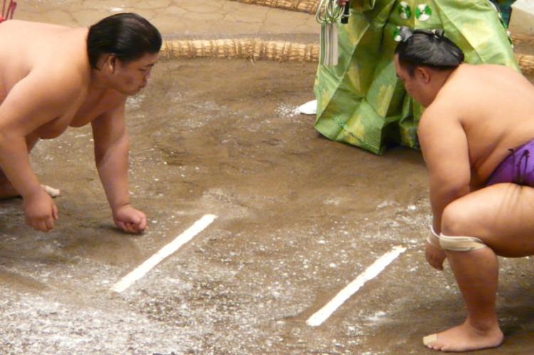 walka-wojownikow-sumo