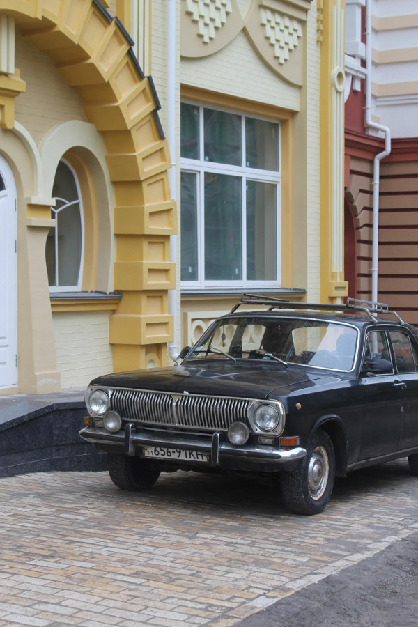 Kijowska czarna wołga