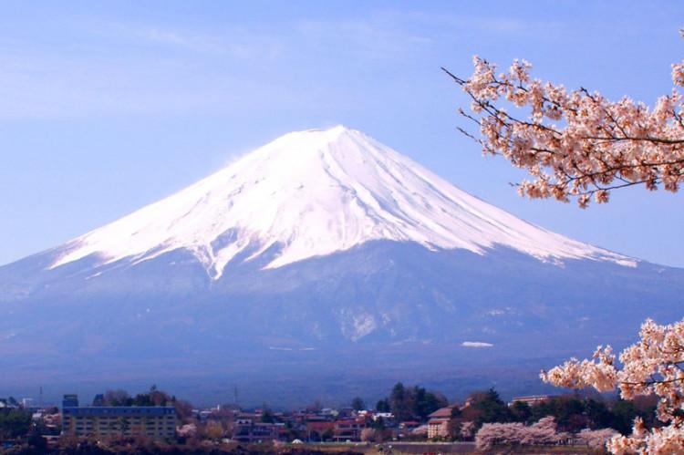 fuji-wiosna