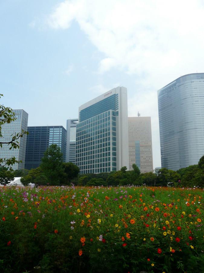 Park w Tokio