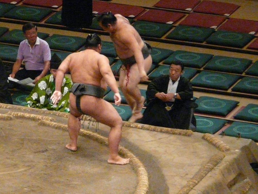 Dangerous Sumo
