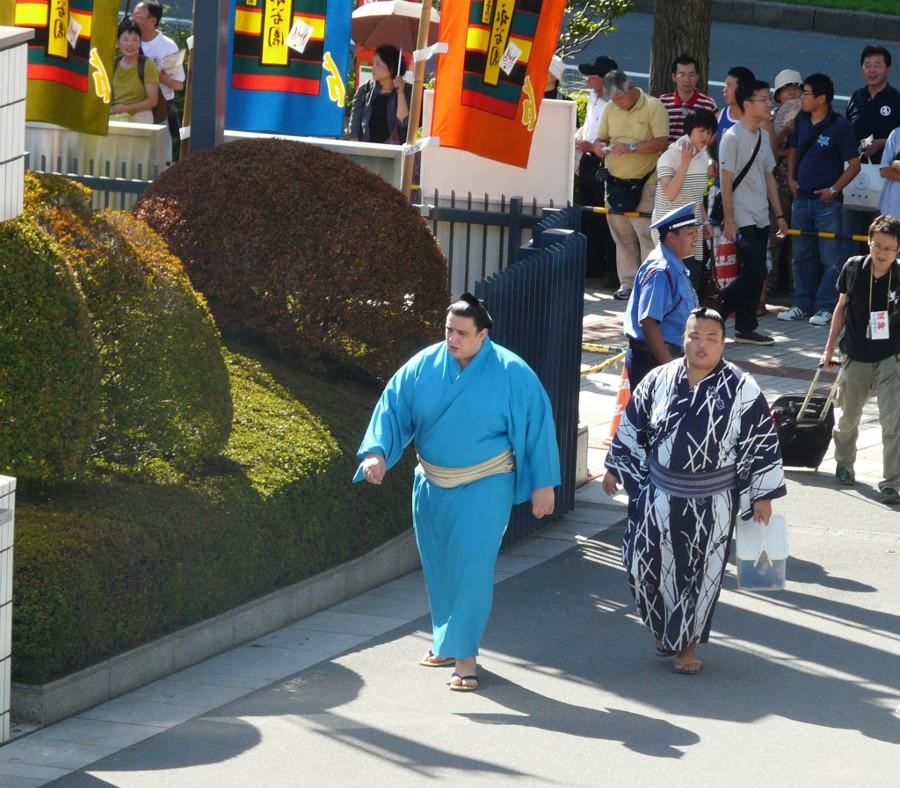 Sumo in kimono