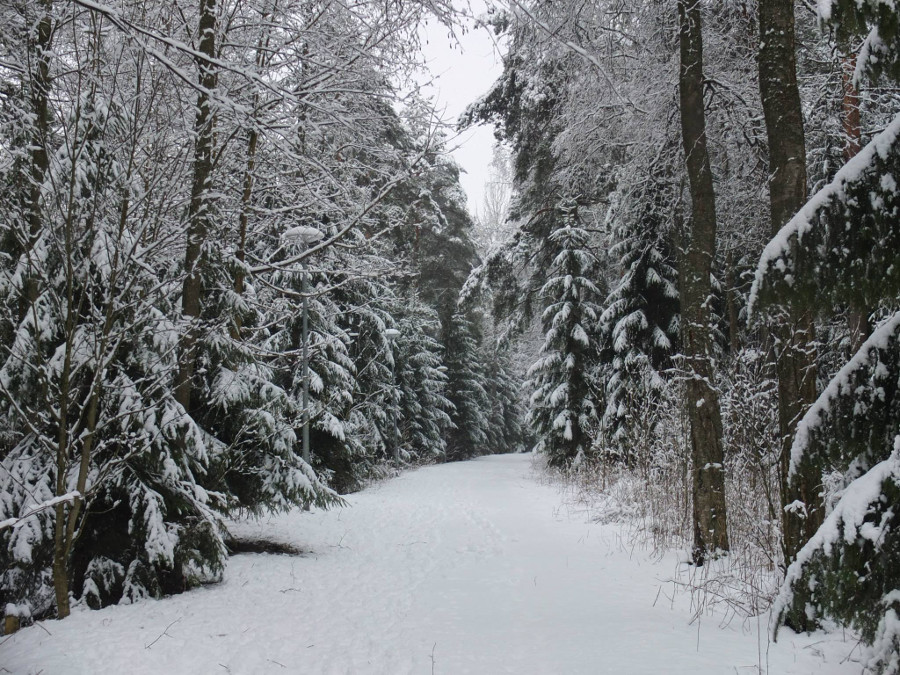 Zima w Finlandii