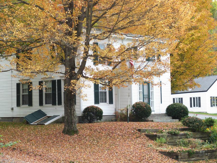 Dom i żółte liście