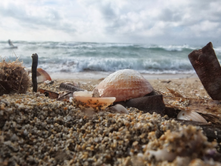 Codzienność zaklęta na plaży