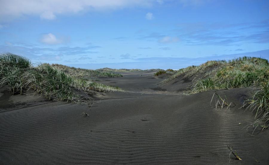 Czarne plaże Karekare