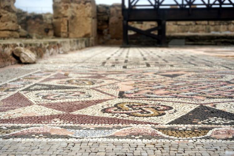 cypr-poludniowy-okladka