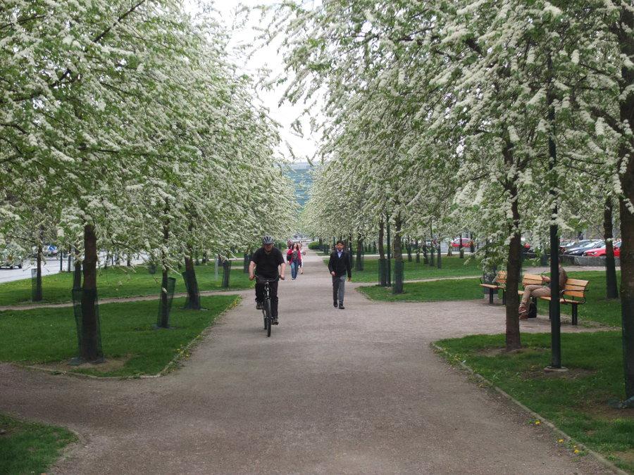 Wiosna w centrum miasta w Finlandii