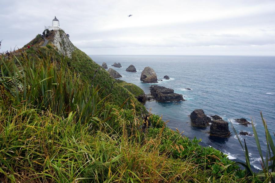 Latarnia morska w Nowej Zelandii